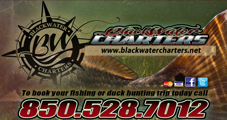 Blackwater Charters, North Florida Charter Fishing, Duck Hunting